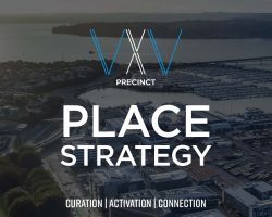 VXV_Place Strategy__Page_01_Crop